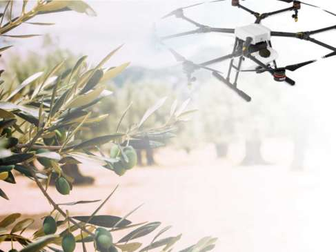 Δακοπροστασία με drones - Σύγκριση με τις παραδοσιακές μεθόδους ...